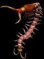 Bestiary Centipede full3.png