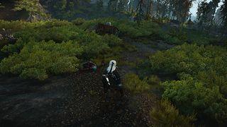 Witcher 3 Tough Luck (2).jpg
