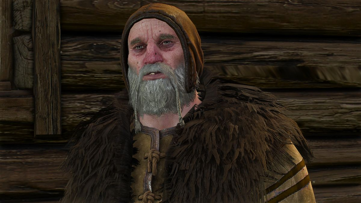 Old Sage The Official Witcher Wiki