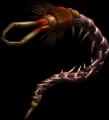 Bestiary Centipede full2.png