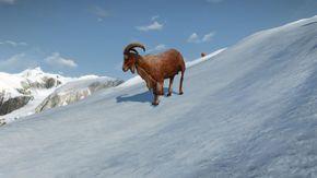 Tw3 goat.jpg