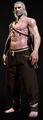Tw3 armor skellige breeches.png