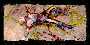 a dead Salamander