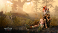 Witcher3 en wallpaper the witcher 3 wild hunt succubus 1920x1080 1448369835.png