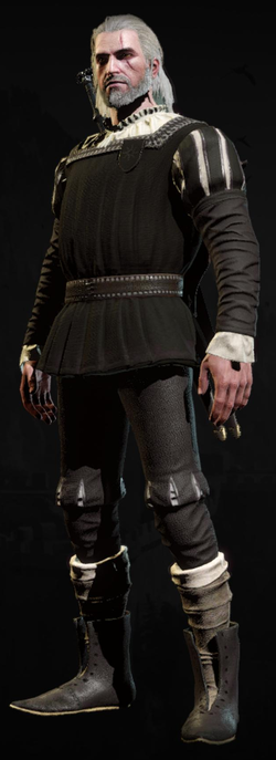 Elegant courtier's doublet 3 - The Official Witcher Wiki