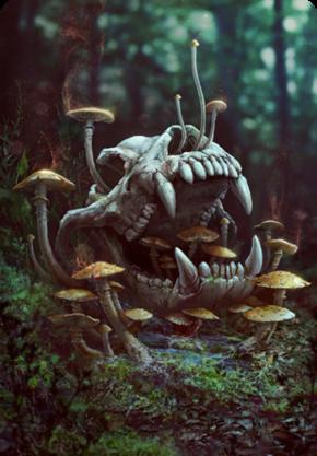 Tw3 cardart skellige special mushroom.png