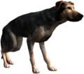 Bestiary Dog full.png