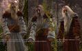 RotWW Druids.jpg