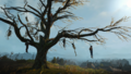 Tw3-hanged-mans-tree-01.png