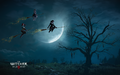 Tw3 wallpaper witches - halloween special 2015 1920x1200.png