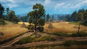 Tw3 wheat fields.jpg