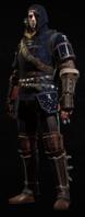 Tw3 armor grandmaster feline gear.png