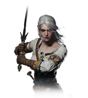 Tw3 journal ciri.png