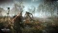 Tw3 e3 2014 screenshot - Geralt fighting a werewolf in No Man's Land.jpg