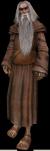 Druido anziano