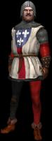 Guardia cittadina