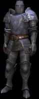 Cavalier edell'Ordine in armatura completa