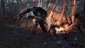 Witcher3-1.jpg