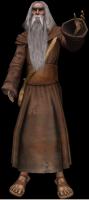 Il druido più vecchio