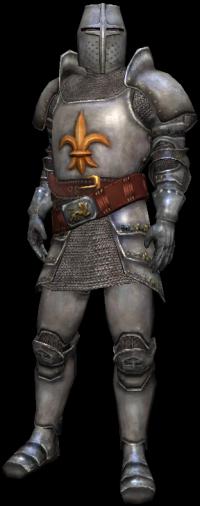 una guardia cittadina