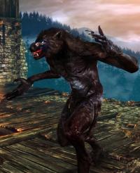 487px-Tw2 screenshot werewolf.png