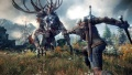 The-Witcher-3-Unwise-petting-maneuver.jpg