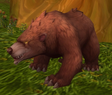 Young Forest Bear - Wowpedia - Your wiki guide to the World