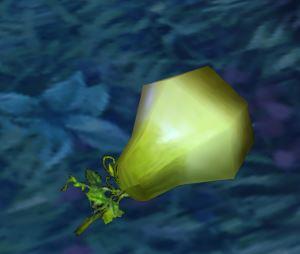 Fuzzy Pear.jpg