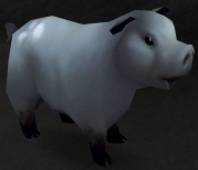 Image of Warsong Swine
