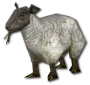 MiniSheep.png