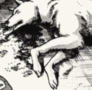 Image of Sharptooth