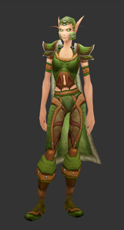 Blood Elf female wearing the Wild Leather set