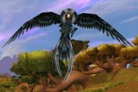 Image of Windroc Matriarch