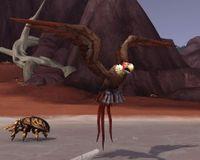 Image of Bonebeak Vulture