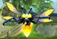 Image of Glittering Amberfly