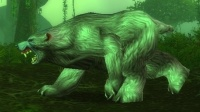 Image of Grizzled Ironfur Bear