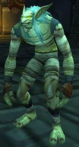Image of Mummified Headhunter