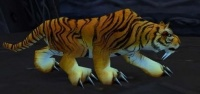Image of Zulian Tiger