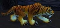 Image of Zulian Tiger