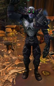 Image of Tannon the Spiritbinder