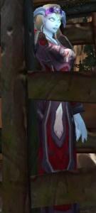 Image of Captured Valgarde Mage