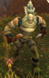 Image of Mossflayer Rogue