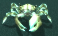 Image of Spined Crawler