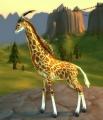 Giraffe Calf.jpg