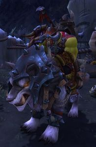 Image of Commander Drald