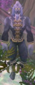 Image of Elder Bladeswift