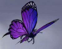 Image of Vale Flutterby