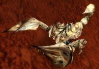 Image of Scorpid Worker