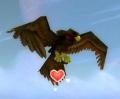Tickbird Hatchling.jpg
