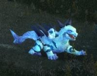Image of Warp Hunter